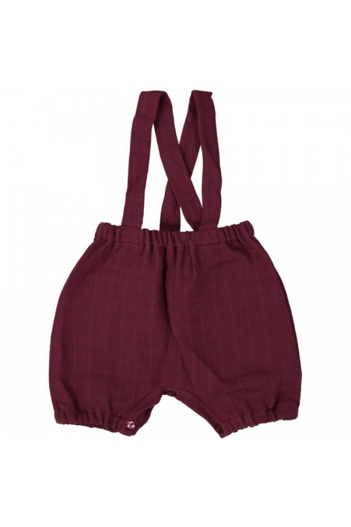Baby pants Echassier
