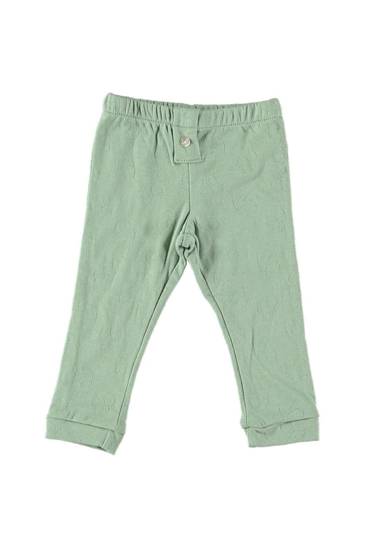 leggings bébé jersey de coton bio vert amande