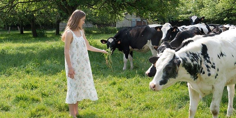 Pyjamas & chemises de nuit 100% coton bio certifié - by Risu Risu